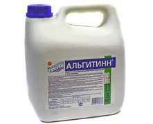 АЛЬГИТИНН, 3л канистра, жидкость для борьбы с водорослями